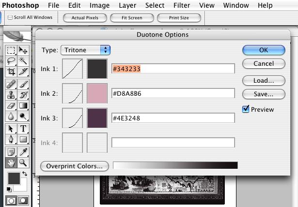 dialog box for image duotone options mode