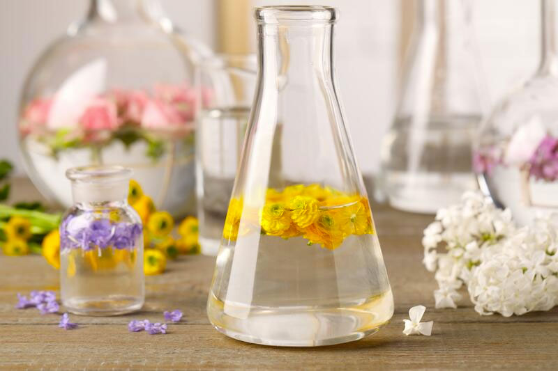 Glucam for a fixative: Painting, Chemistry, and Perfumes for Women
