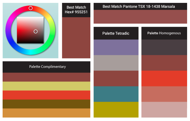 Color of the Year's Chemistry: Behind pantone's marsala18-1438