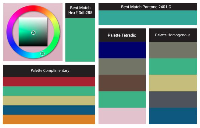 Color palette for turquoise, complimentary, tetradic, homogenous graphic designer Nancy Tranter